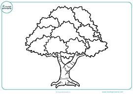 77 ideas Dibujo De Un Arbol Frondoso on emergingartspdxcom