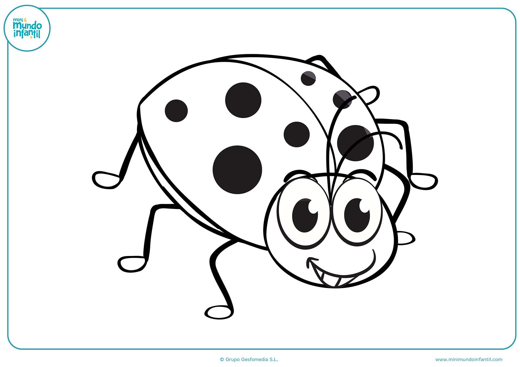 Dibujos Varios Para Colorear: Dibujos De Insectos Para Colorear