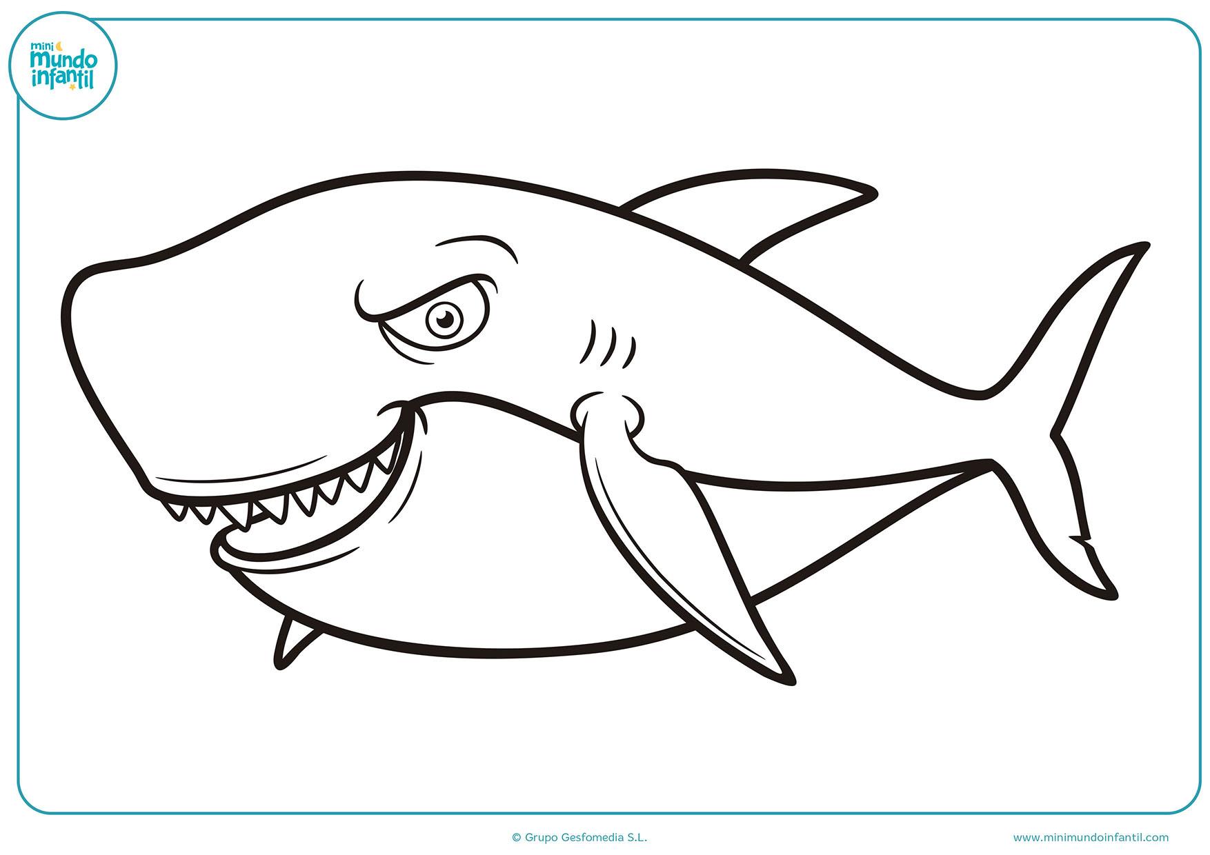Dibujos De Animales A Color Para Imprimir: Dibujos De Animales Marinos Para Colorear