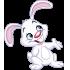 Lectura corta para niños sobre el conejo