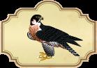 El águila y el milano