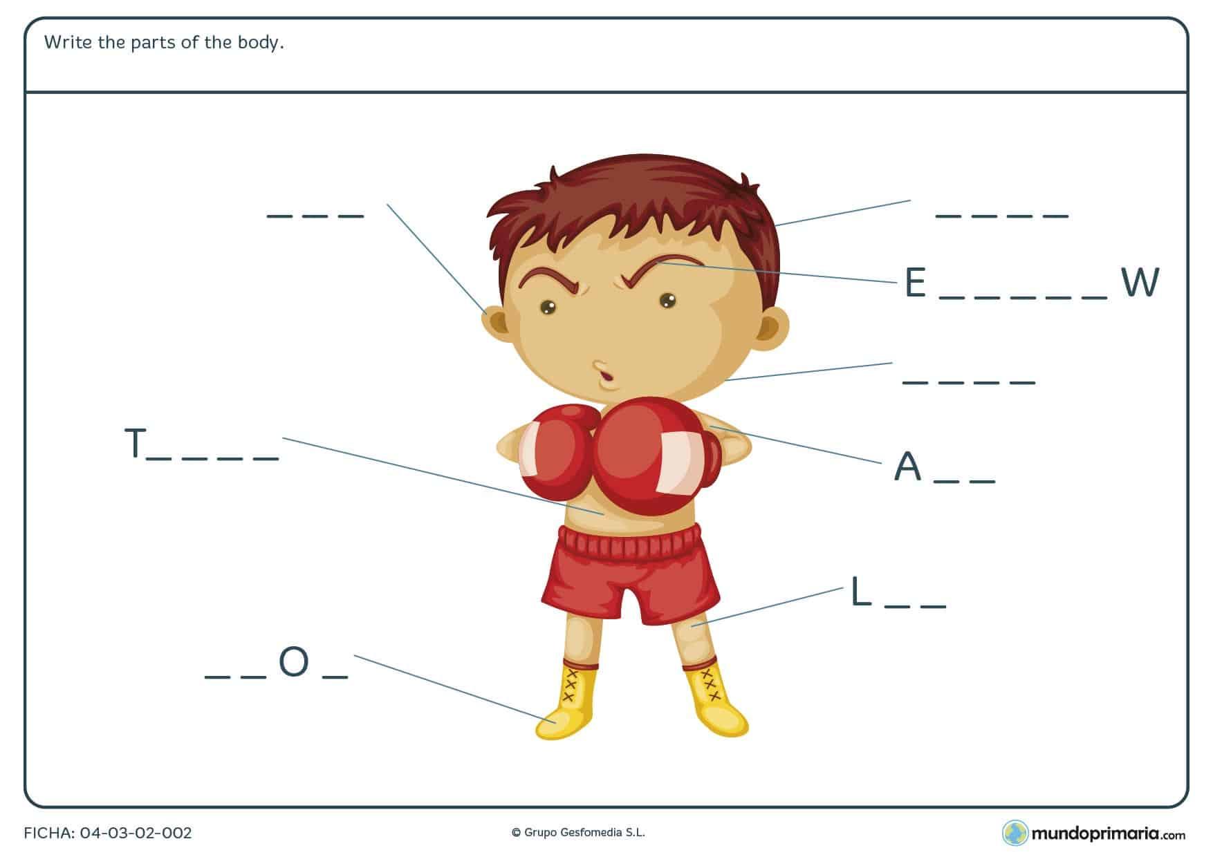 Ficha de body para primaria. Descarga esta ficha para estudiar inglés para niños de primaria