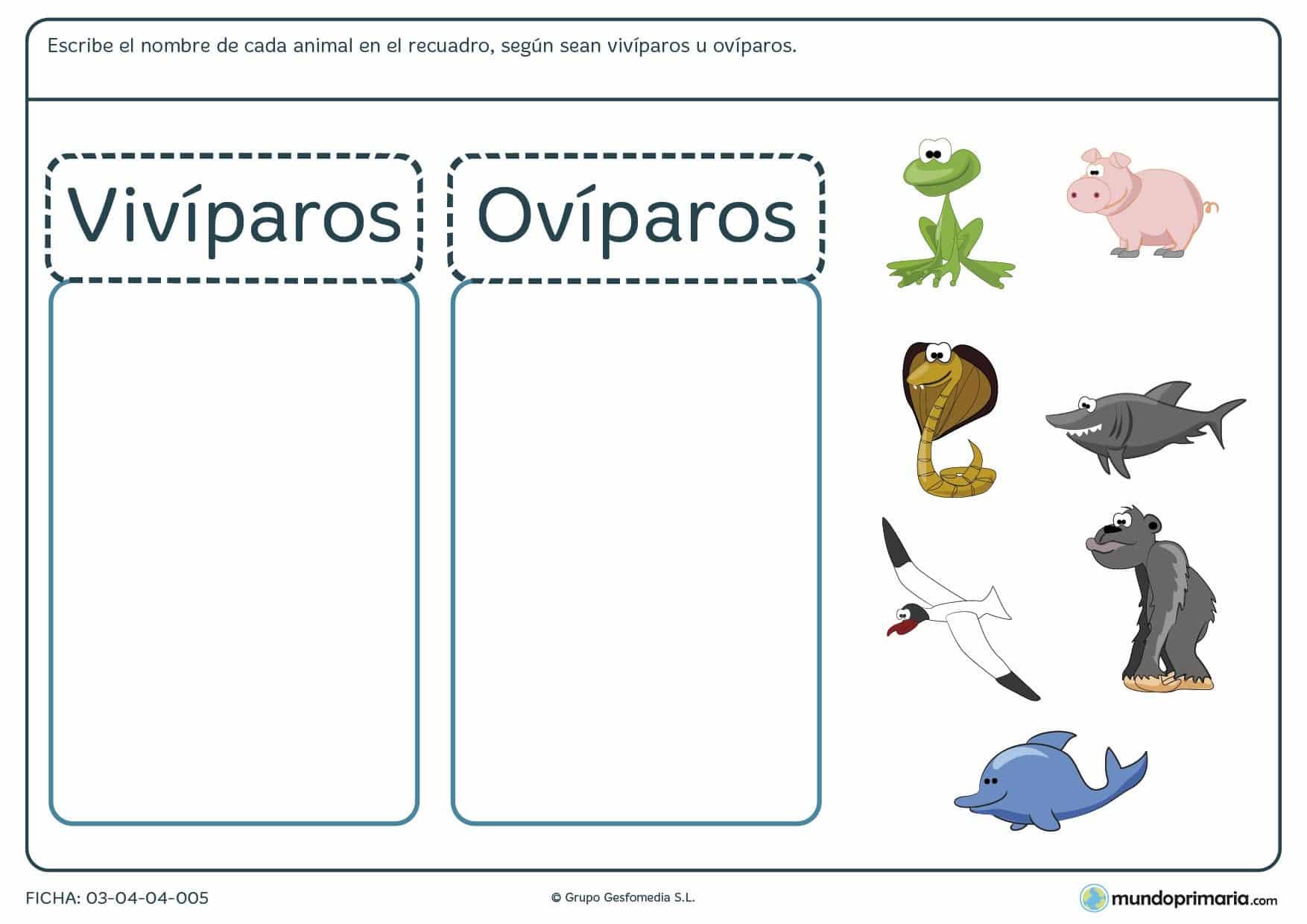 Ficha de distinguir los animales para ni os de 6 a os - Como se aparean los elefantes ...