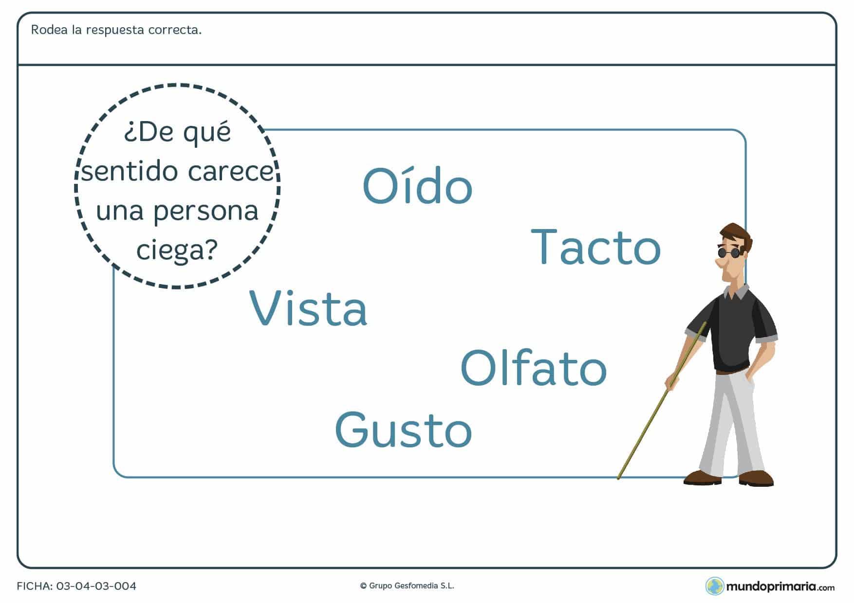 Ficha de la falta del sentido de la vista para practicar los conceptos de primaria sobre los sentidos