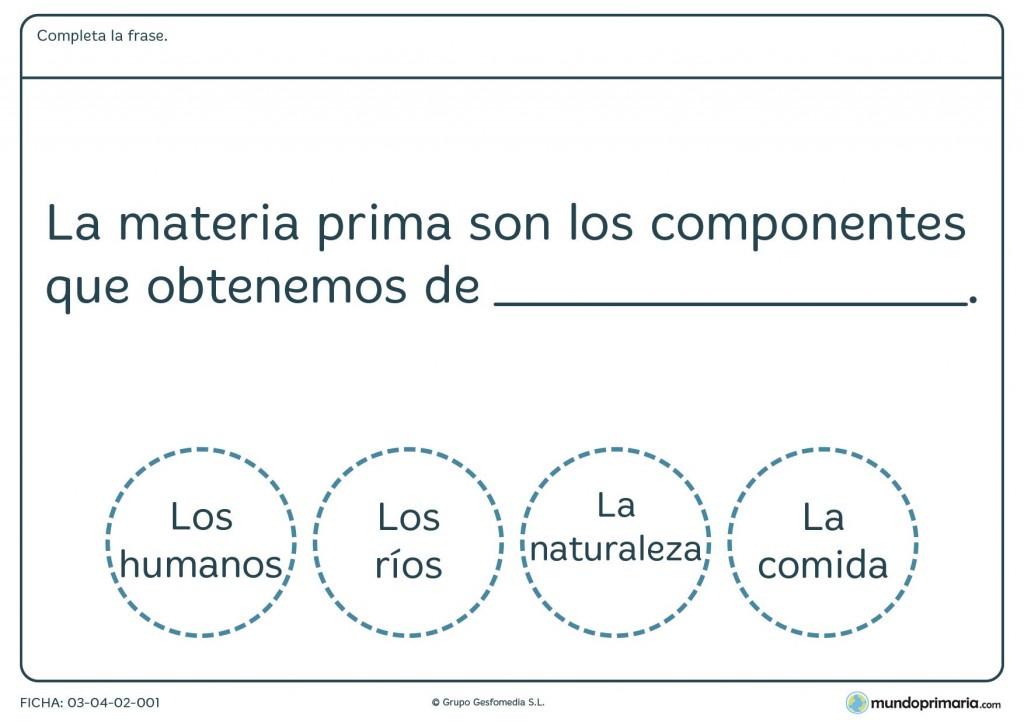 Ficha de la materia prima para primaria