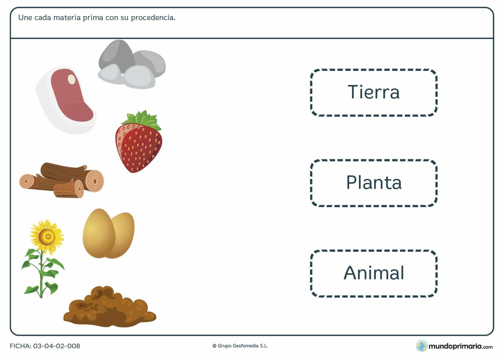 Ficha de la procedencia de materia para que los niños aprendan sobre la procedencia de materias primas ficha para primaria