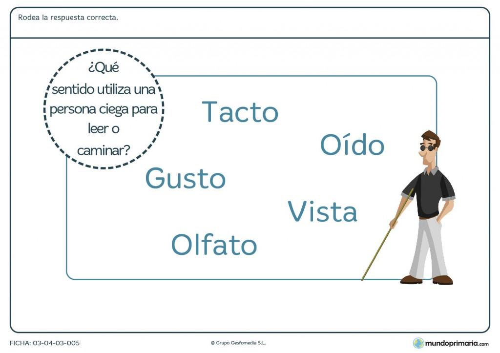 Ficha de la sustitución del sentido de la vista para primaria
