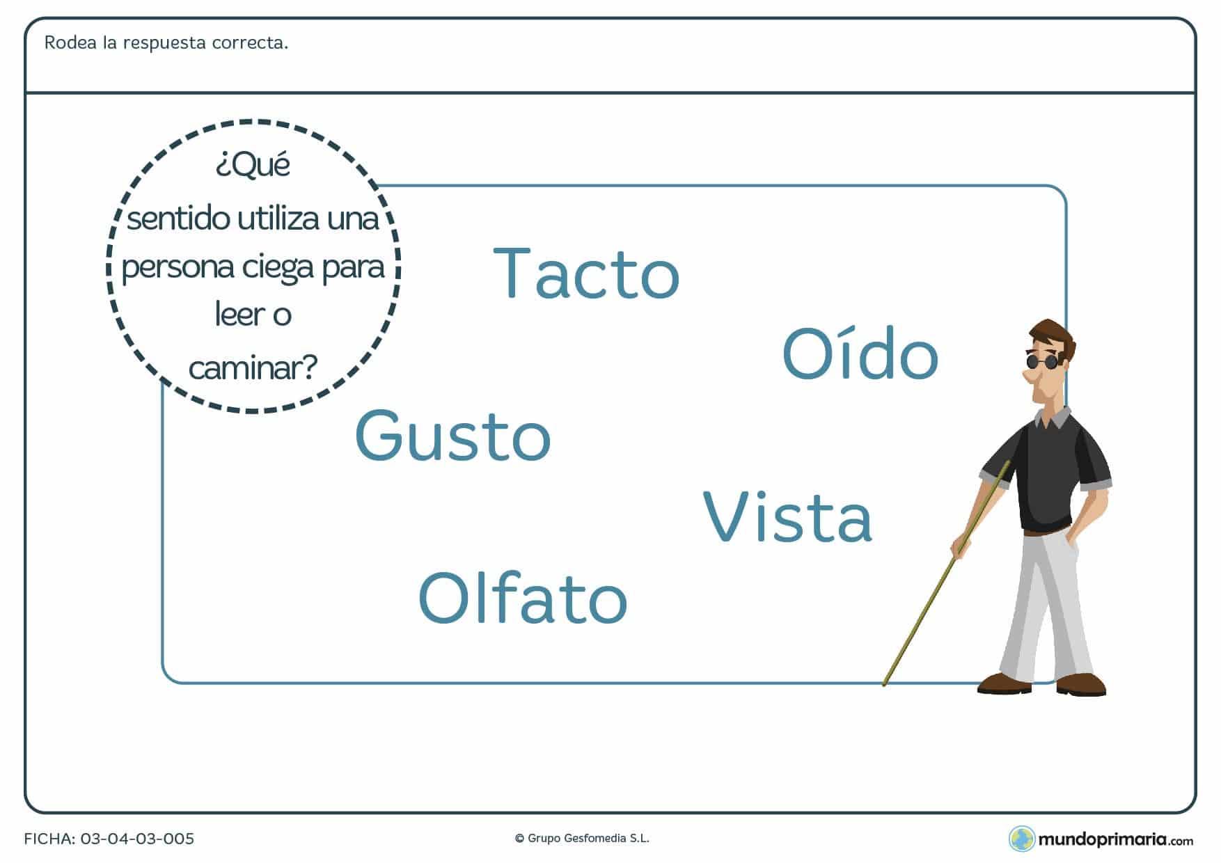 Ficha de la sustitución del sentido de la vista con ejercicios destinados niños de primaria