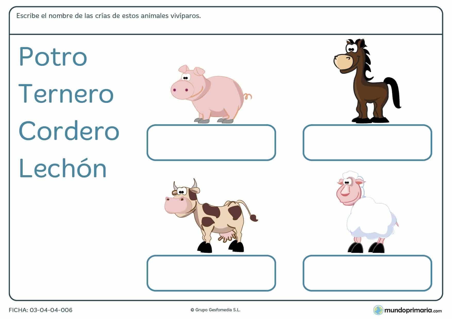Ficha de las crías de los animales para primaria