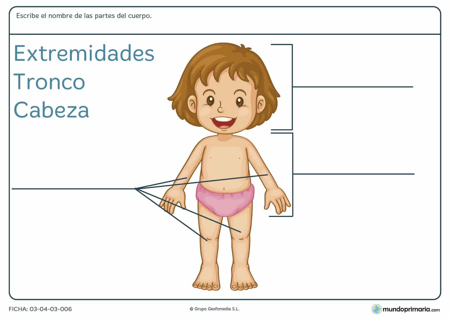 Ficha de las partes del cuerpo para que los niños de 6 años aprendan las partes del cuerpo