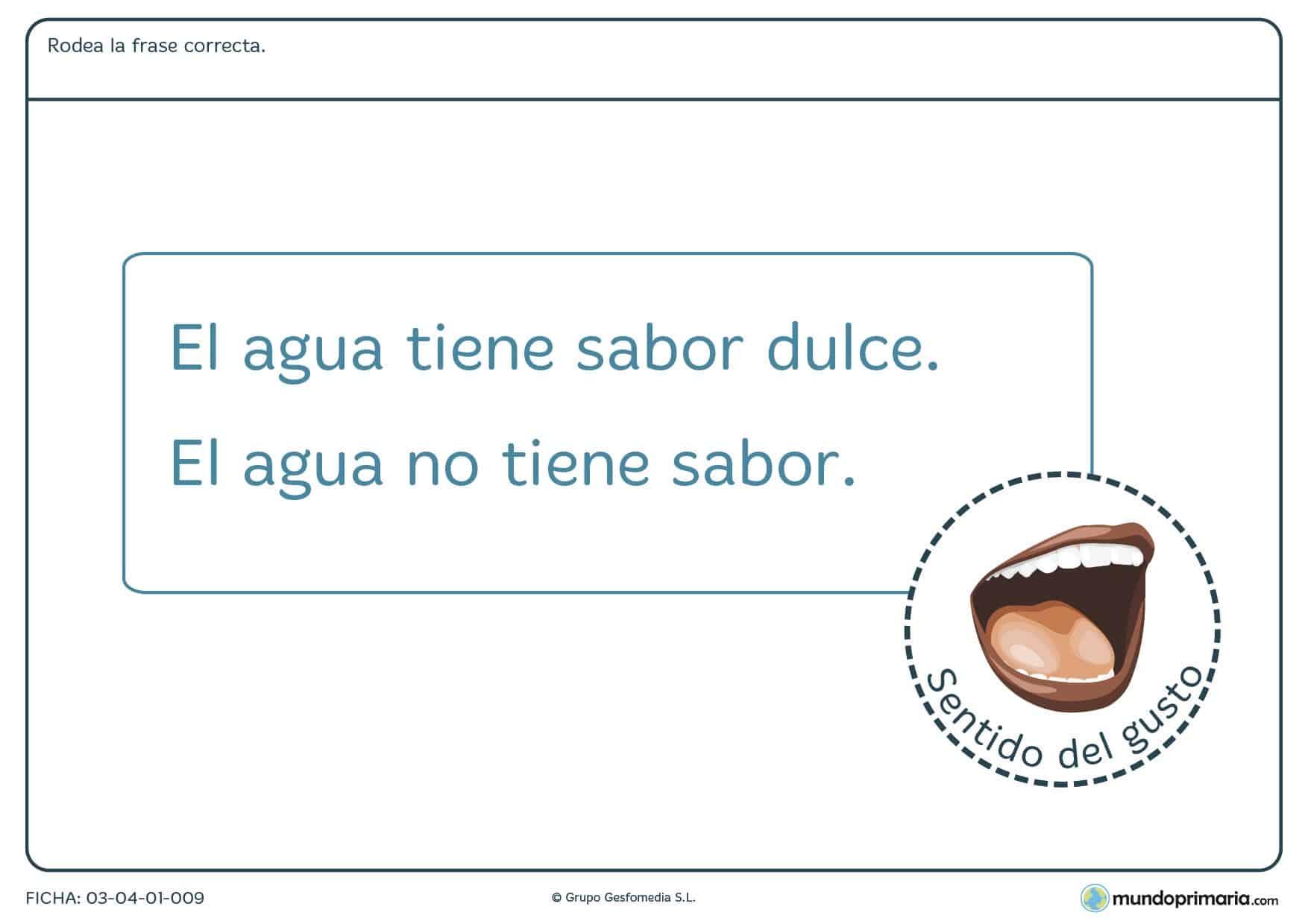 Ficha del agua y su sabor con la que aprender sobre el agua en 1º de primaria