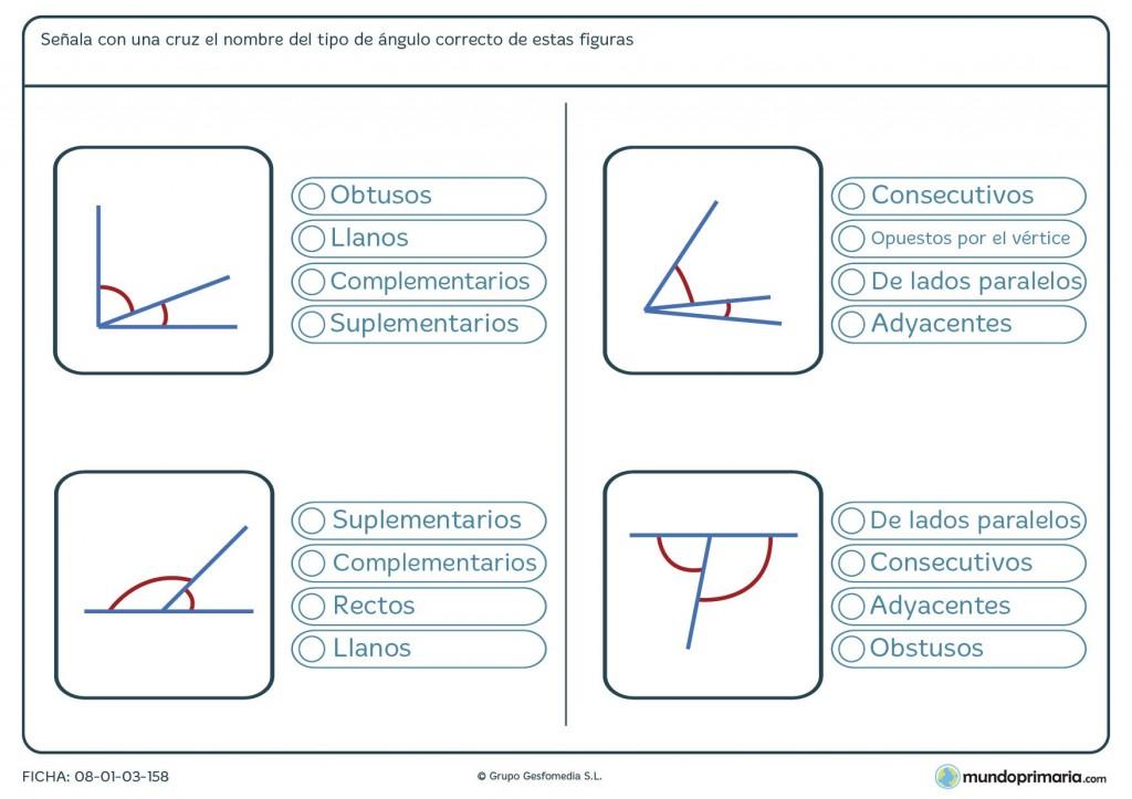 Ficha de ángulos correctos para sexto de primaria