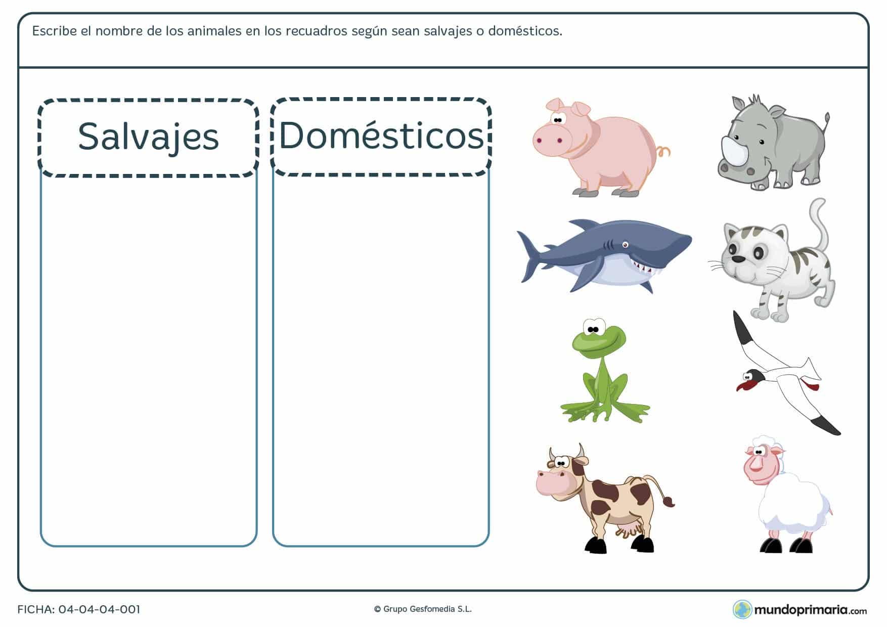 Ficha de animales en la que debes organizar en grupos, ya sean salvajes o domésticos, una serie de animales que te enseñamos.