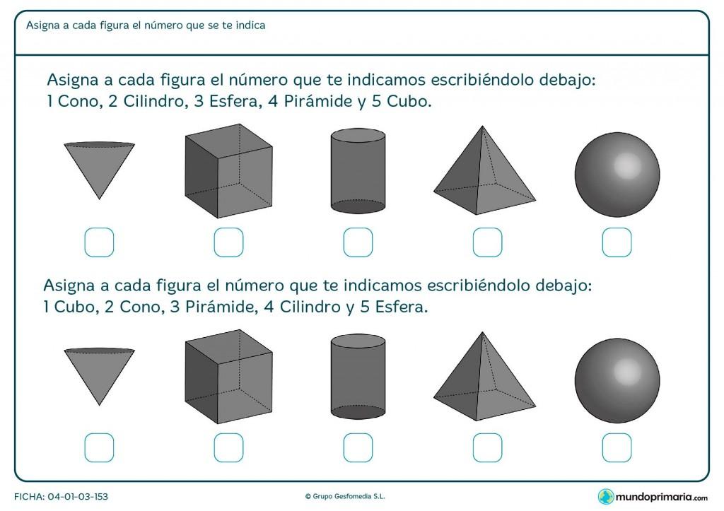 Ficha de cilindros para primaria