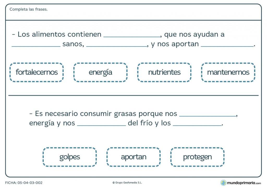 Ficha de energía de alimentos para primaria
