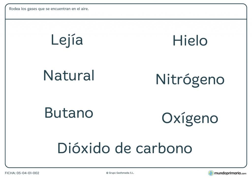 Ficha de gases para primaria