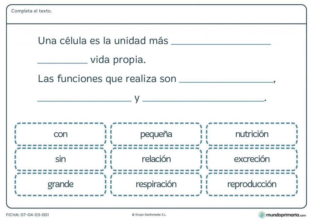 Ficha de la célula para primaria