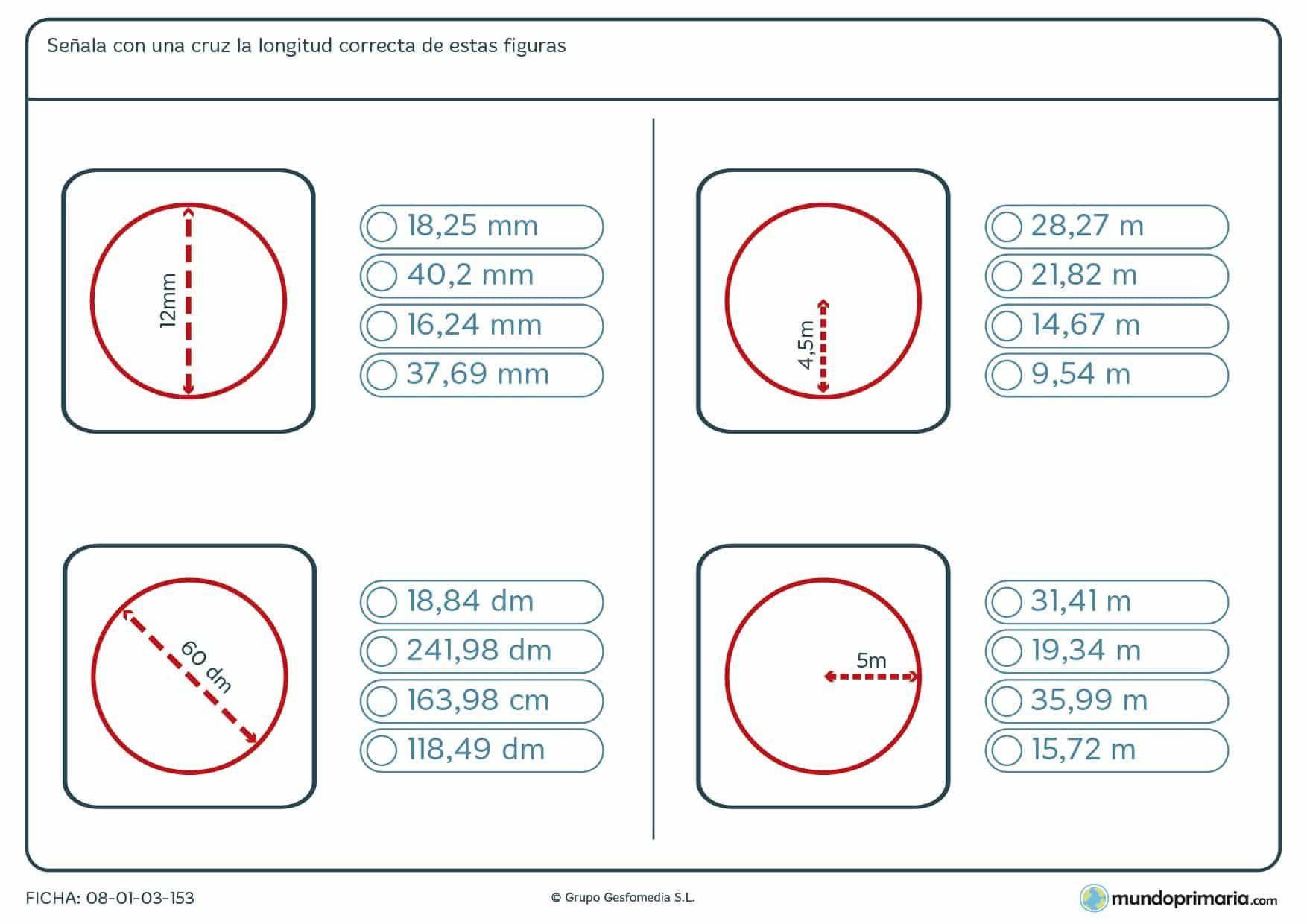Ficha de longitud de círculos utilizando el radio o el diámetro como información.