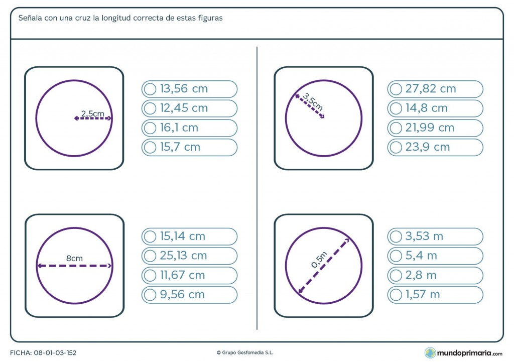 Ficha de longitud de figuras para sexto de primaria