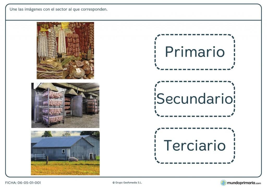 Ficha de los sectores económicos para primaria