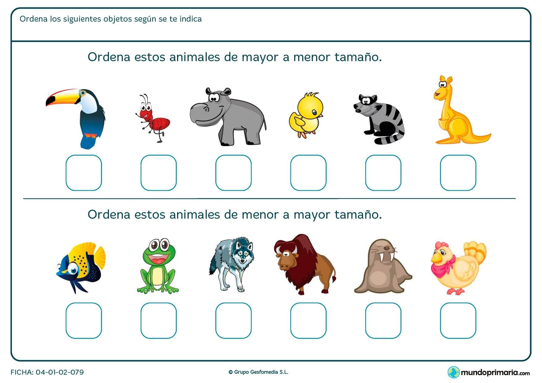 Ficha de mayor tamaño o de menor tamaño entre animales, marca la opción correcta.