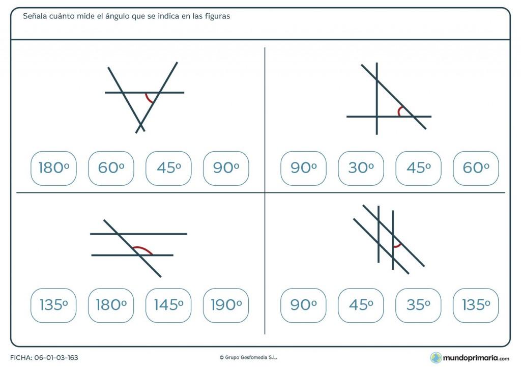 Ficha de medida de ángulos para primaria