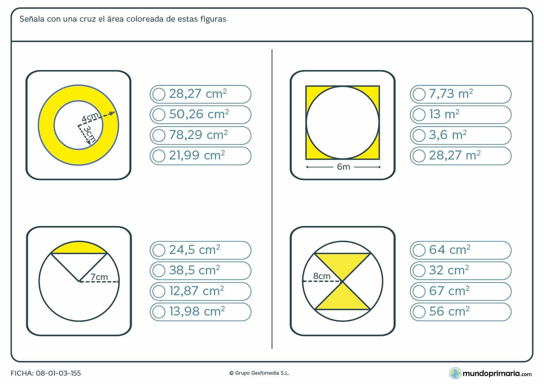 Ficha de partes de áreas de un círculo teniendo en cuenta los datos proporcionados en la ficha.