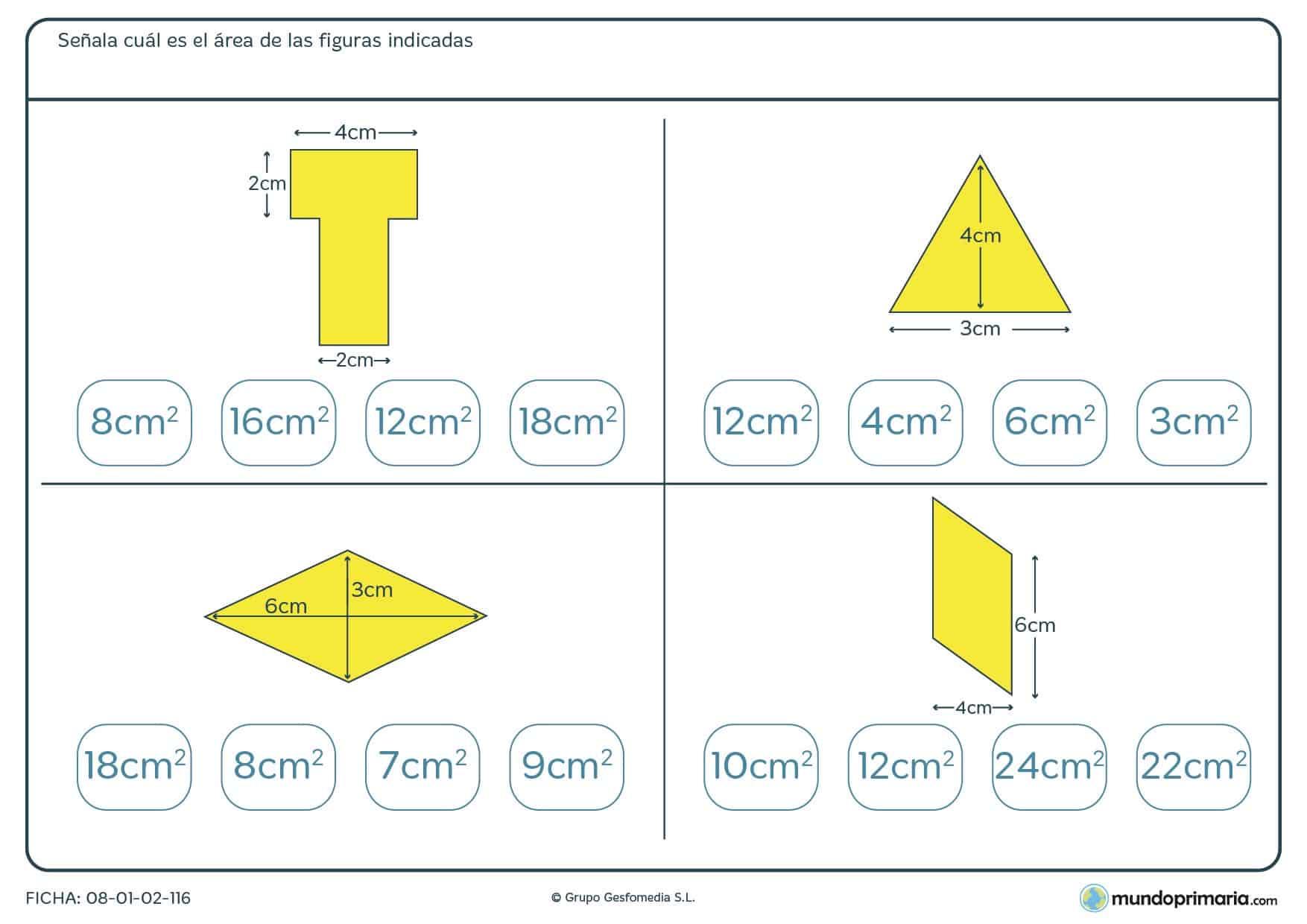 Ejercicios magnitudes para sexto primaria