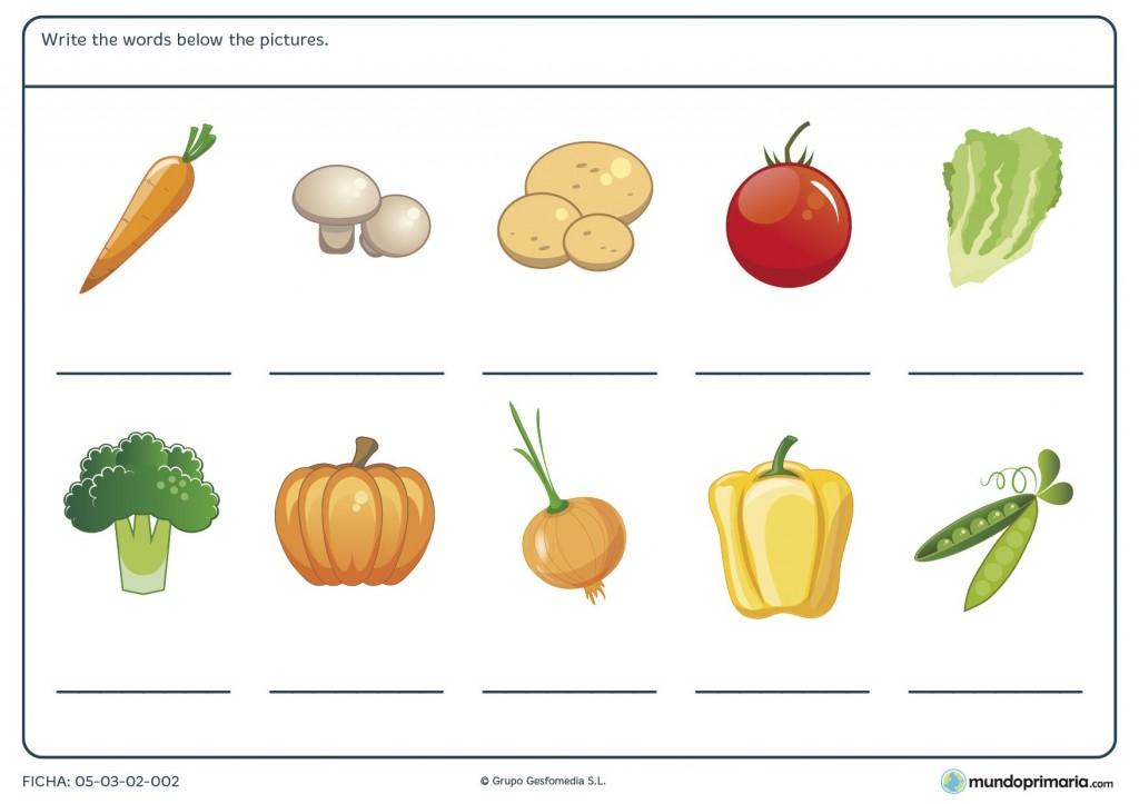 Ficha de vegetables para primaria