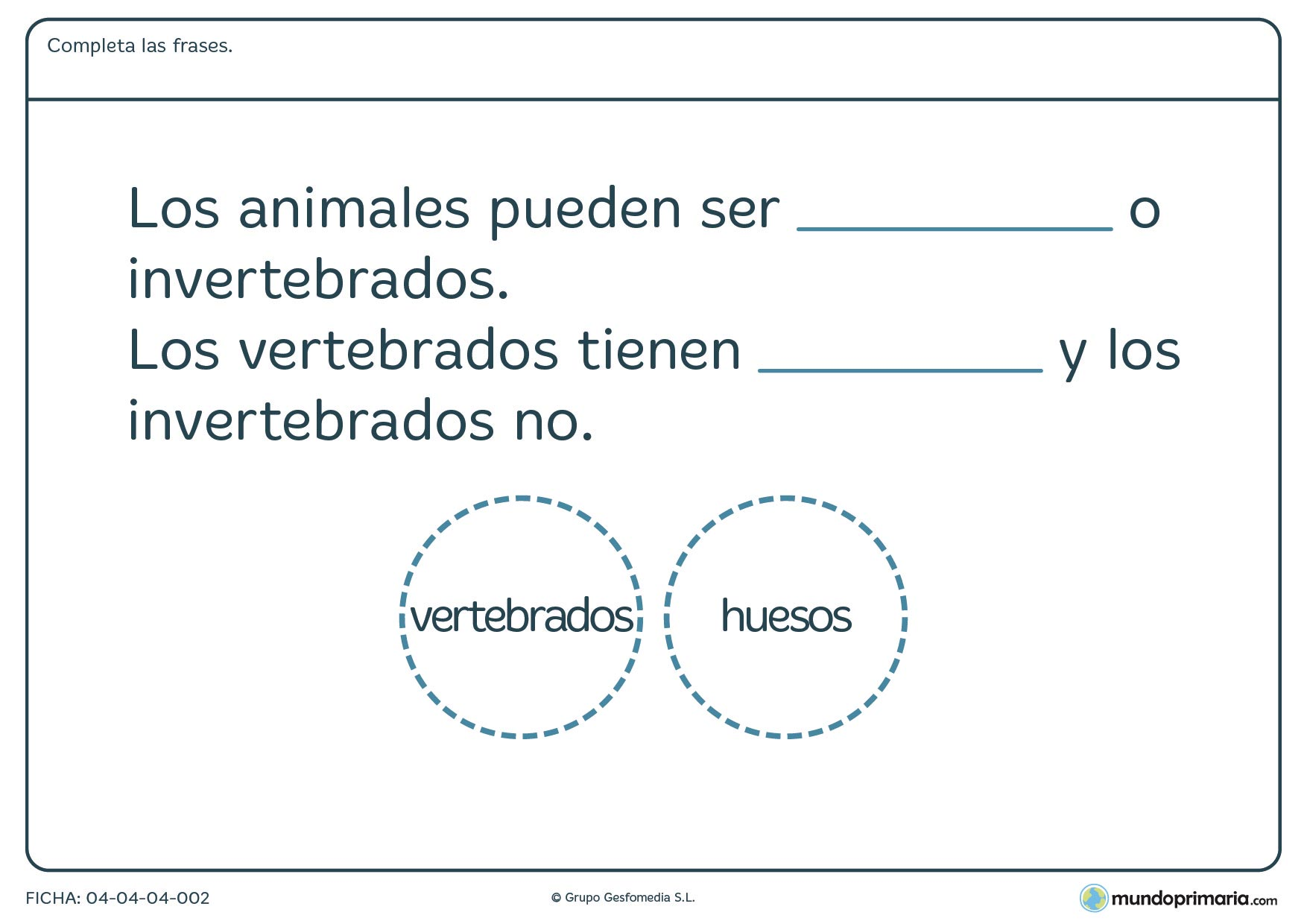 Ficha de vertebrados o invertebrados, coloca de forma correcta las palabras referentes a estos tipos de animales.