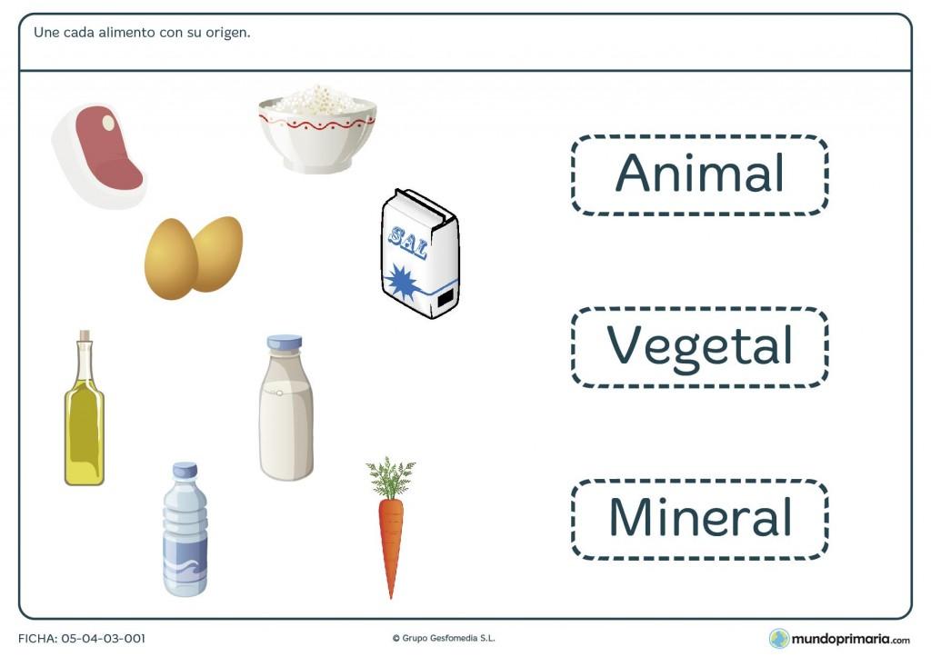 Ficha del origen de los alimentos para primaria
