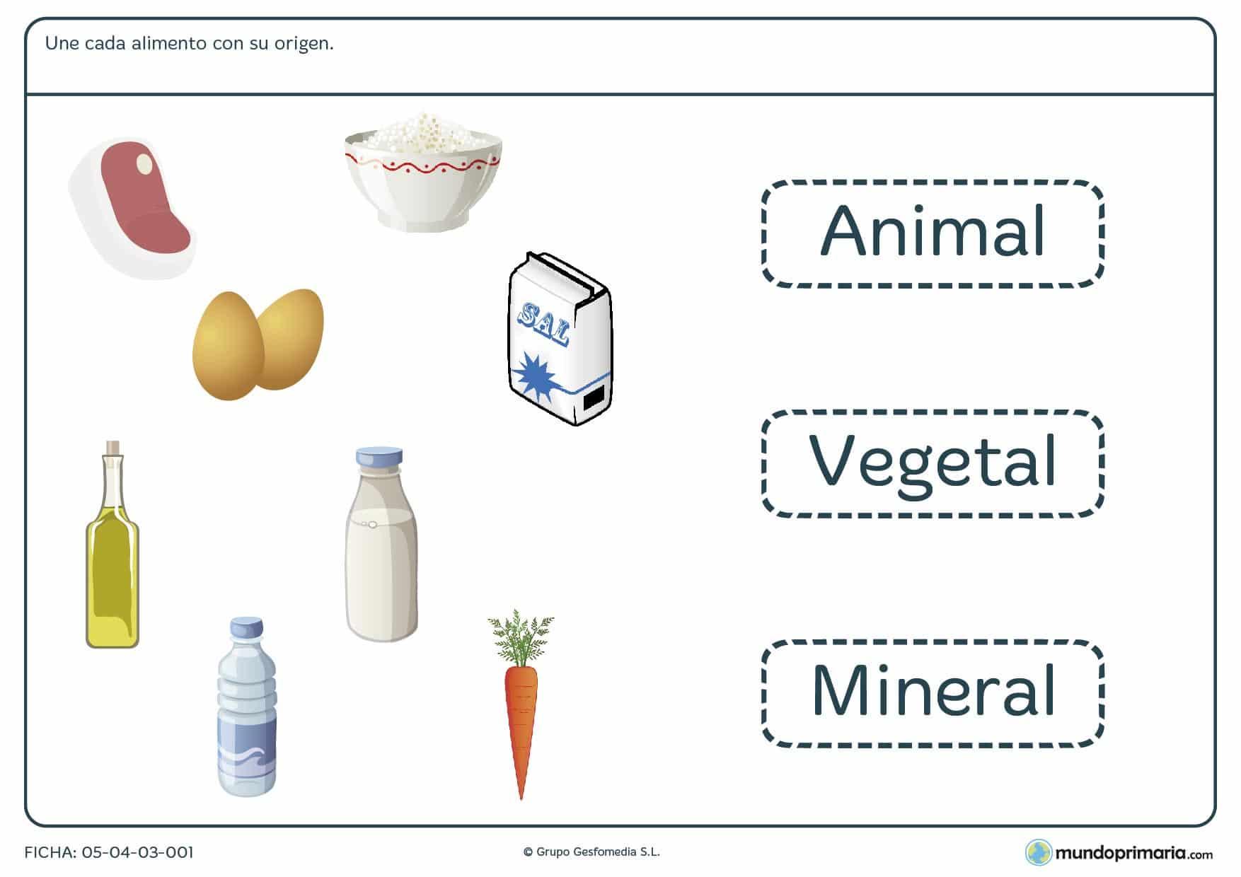 Ficha del origen de los alimentos en las que has de unir cada alimento con su origen, animal, vegetal o mineral.