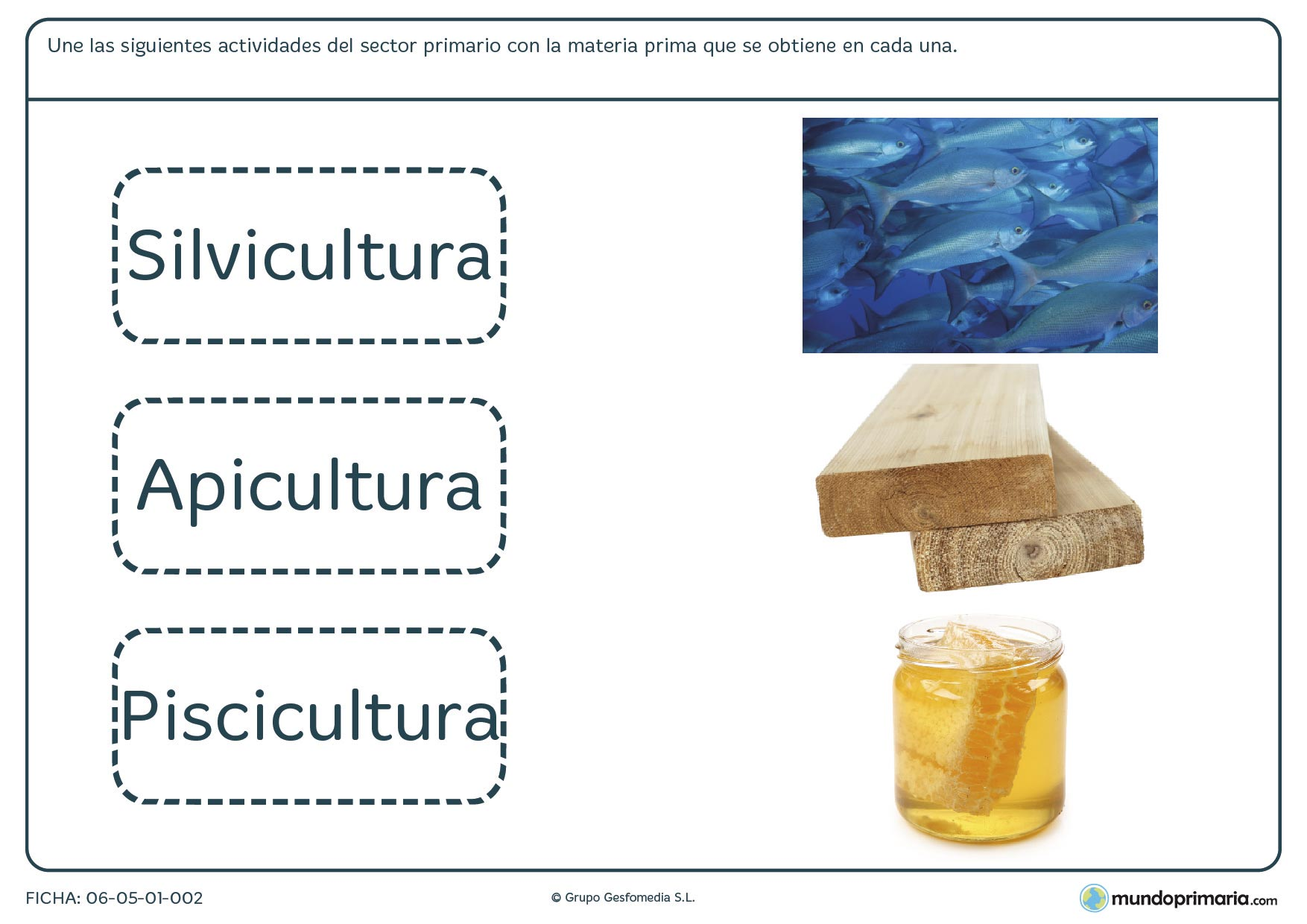 Ficha del sector primario en la que te presentamos 3 imágenes de actividades de este sector y que tienes que unir a sus nombres.