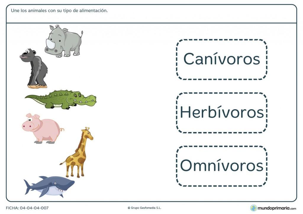 Ficha de animales y su alimentación para primaria