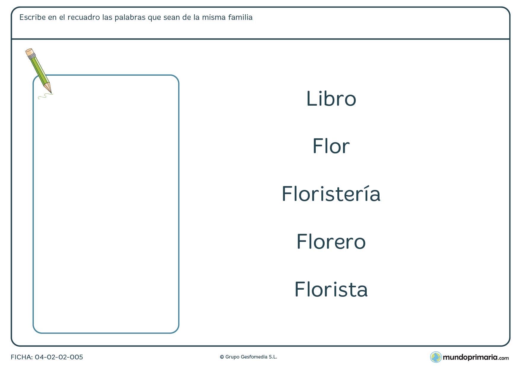 Ficha de aprender familias de palabras para niños de 7 a 8 años en la que tendrás que escribir dentro del recuadro aquellas palabras que sean de la misma familia.
