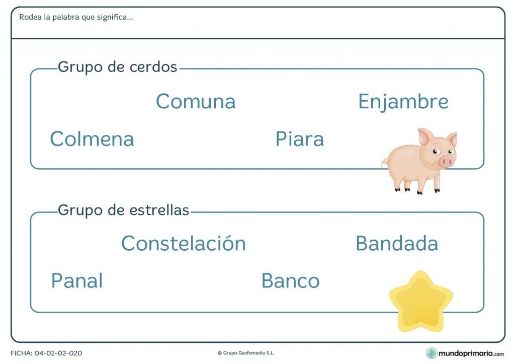 Ficha de palabras para grupos de objetos para primaria