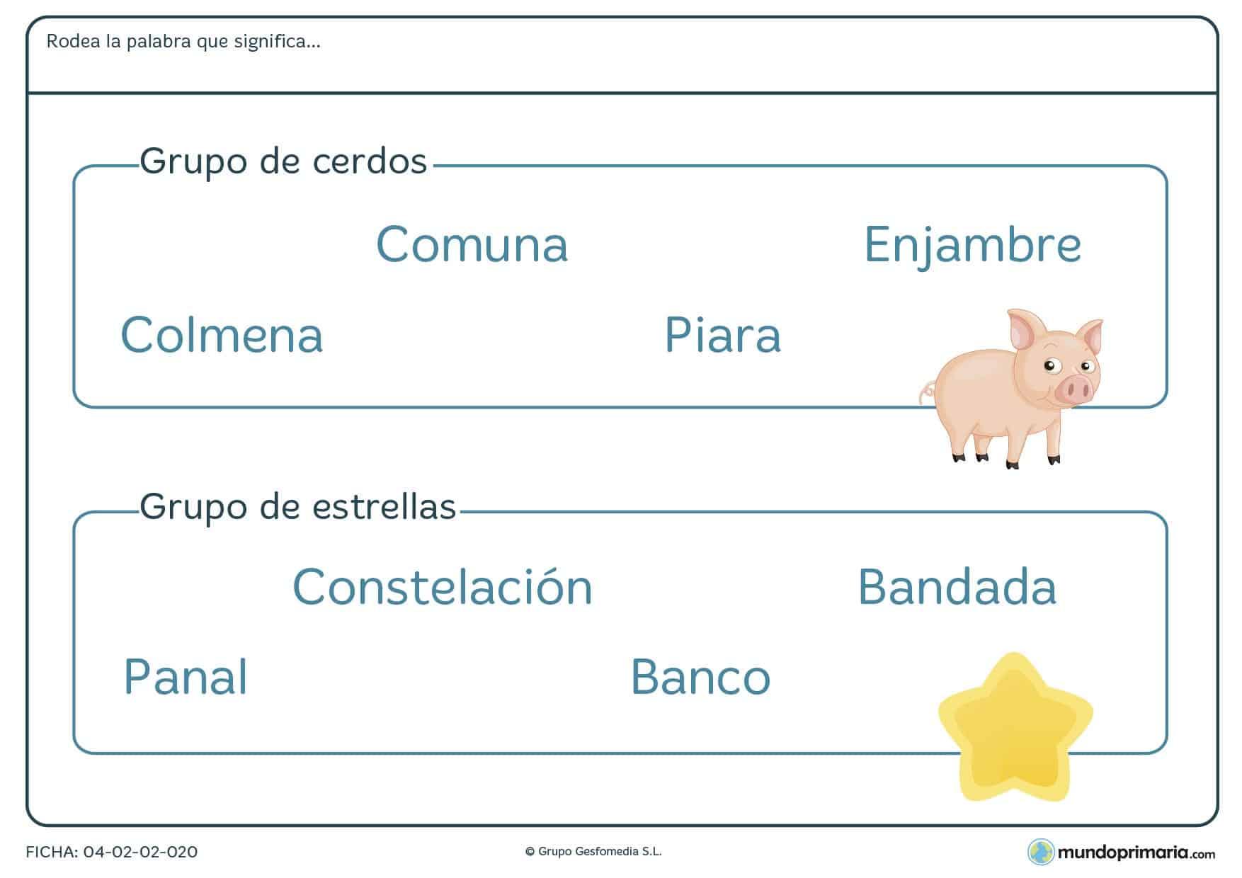 Ficha para niños de segundo de primaria de conocer palabras que designa grupos de objetos en la que tendrás que identificar qué palabra designa al grupo de objetos especificado en el enunciado.