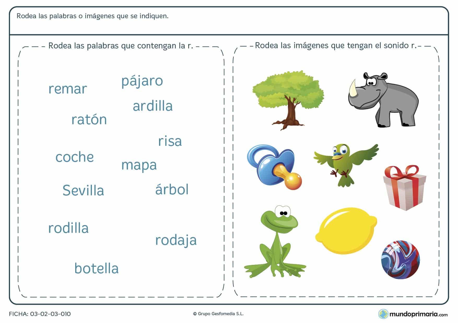Ficha de la letra R para primaria