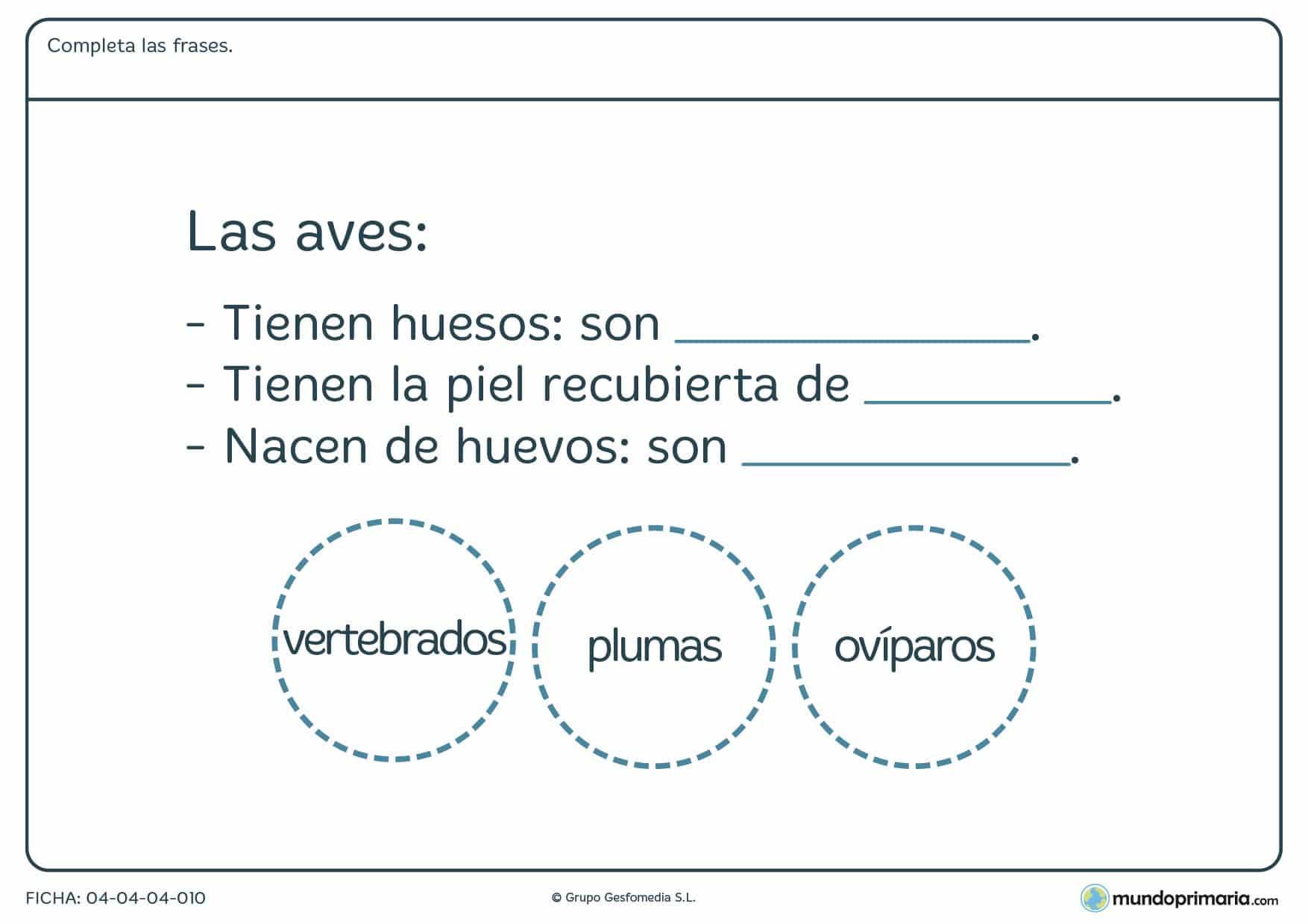 Ficha de las aves en el que hay que completar las frases con las palabras proporcionadas por el ejercicio.
