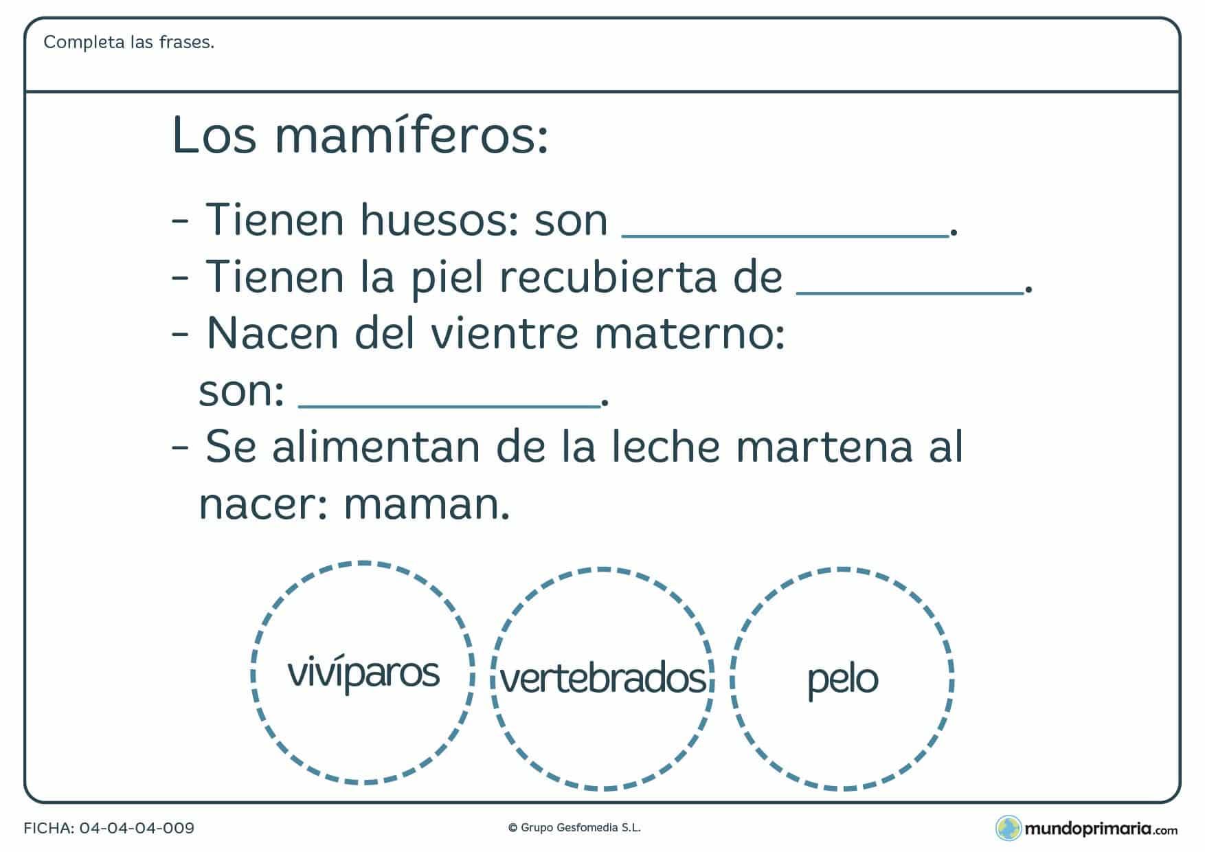 Ficha de los mamíferos en el que hay que completar las frases con las palabras proporcionadas por el ejercicio.