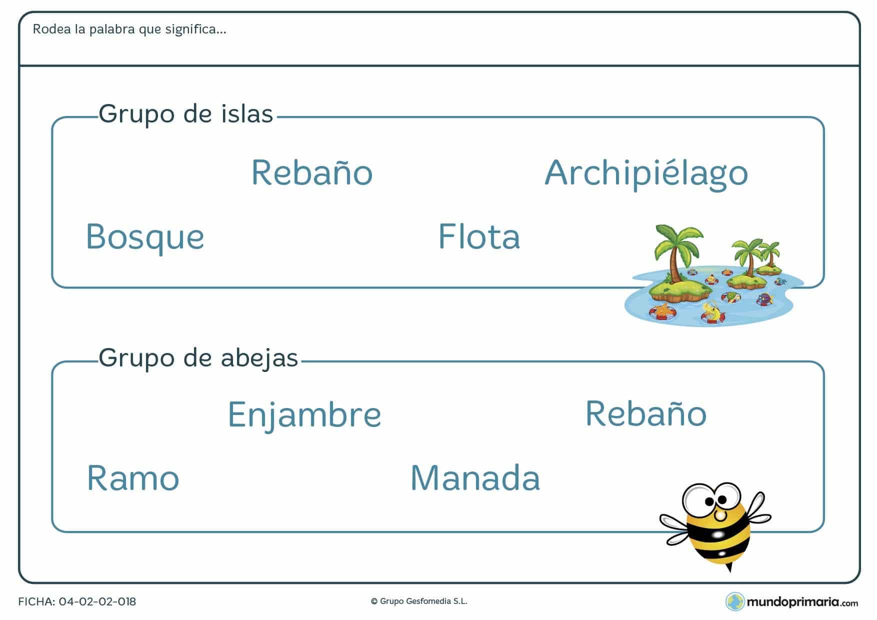 Ficha para niños de 7 a 8 años de palabras que se refieren a grupos de objetos en la que tendrás que identificar qué palabra designa al grupo de objetos especificado en el enunciado.