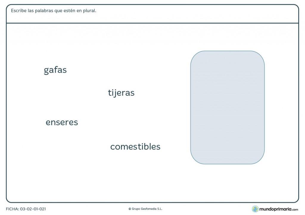 Ficha del concepto plural para primaria