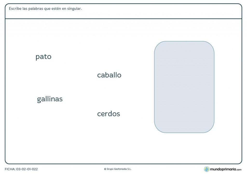 Ficha del concepto singular para niños de primaria