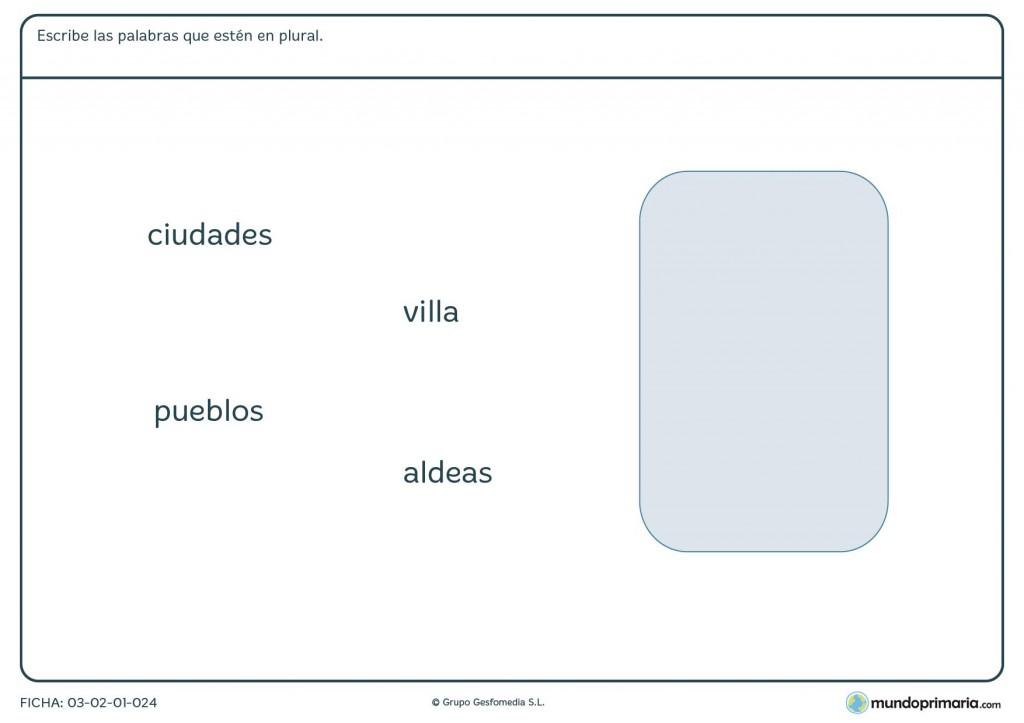 Ficha de palabras en plural para niños de primaria