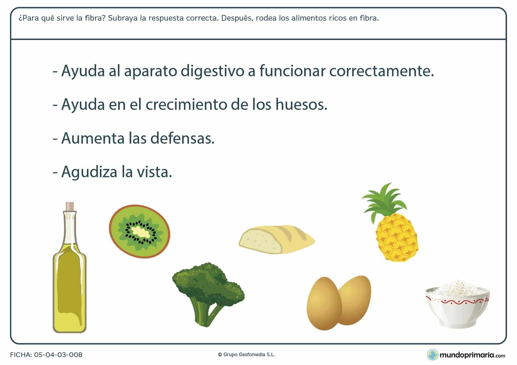 Ficha de los alimentos altos en fibra en el que se tiene que rodear las ímagenes de los alimentos altos en fibra.