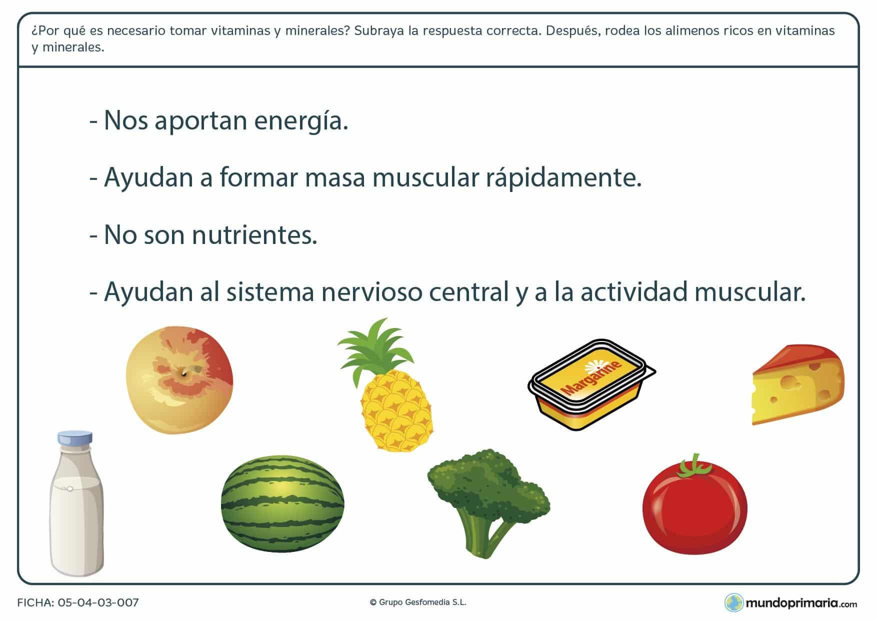 Ficha de los alimentos altos en vitaminas y minerales en el que se tiene que rodear las ímagenes de los alimentos altos en vitaminas y minerales.
