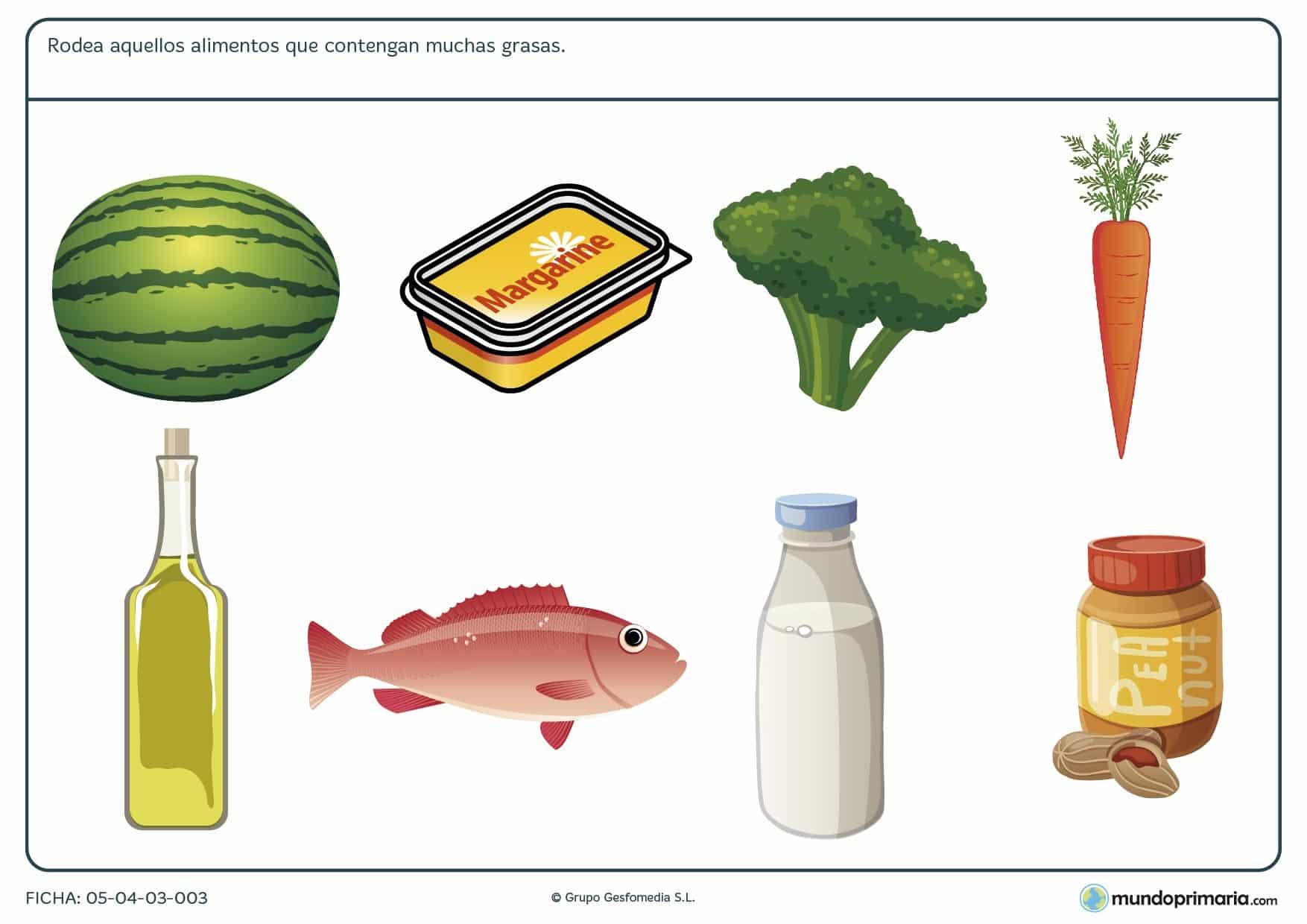 Ficha de los alimentos altos en grasas en el que se tiene que rodear las ímagenes de los alimentos altos en grasas.
