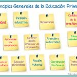 Principios generales de la Educación Primaria