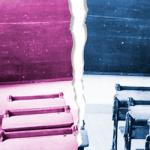 La educación diferenciada o la coeducación
