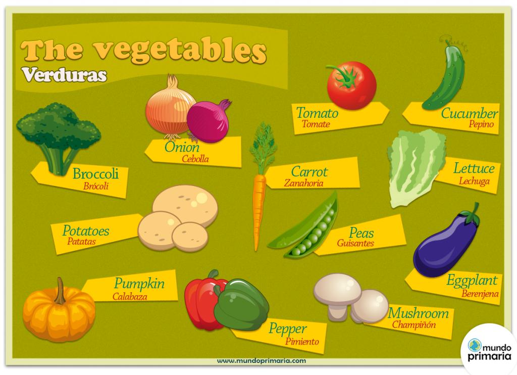 Las verduras en ingl s mundo primaria for Como se dice cocina en ingles